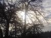 winterliche_morgensonne.jpg